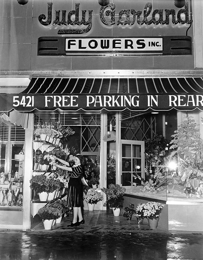 Judy Garland Flowers