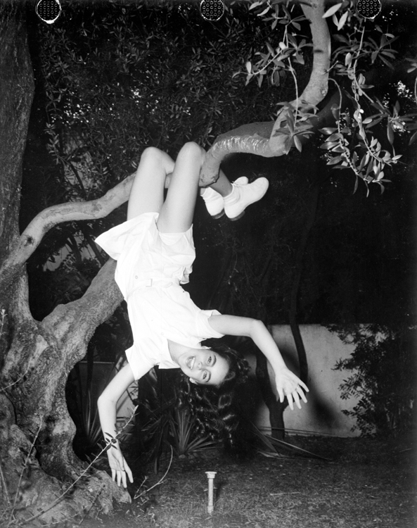 Full shot of Elizabeth Taylor, swinging upside down from tree branch, aprox. 1944.