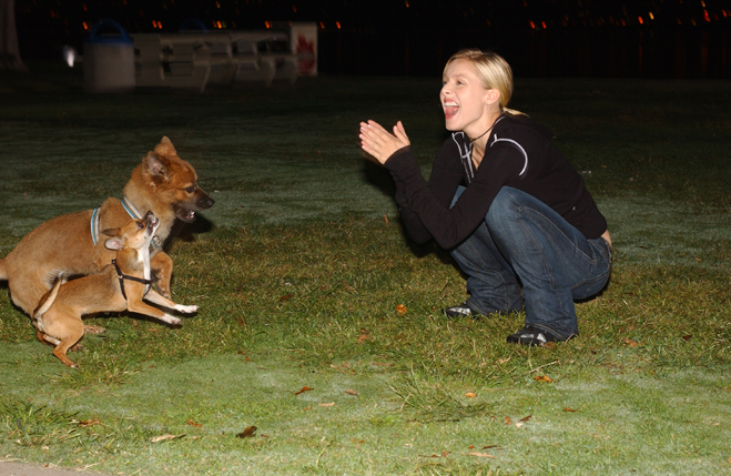 Medium behind-the-scenes shot of Kristen Bell as Veronica playing with dogs on set.