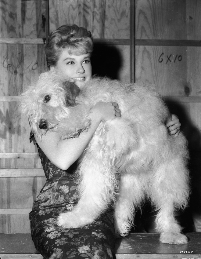 Doris Day as Kate MacKay, with Hobo the sheepdog.