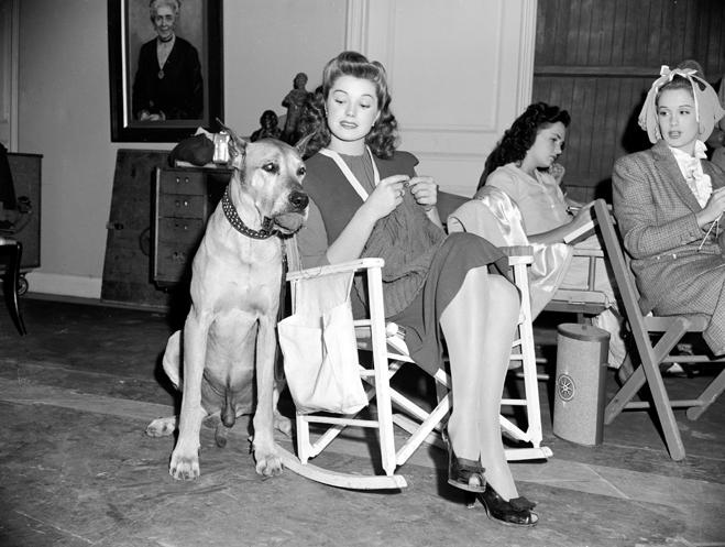 Esther Williams as Caroline Brooks, knitting, sitting next to dog/great dane.