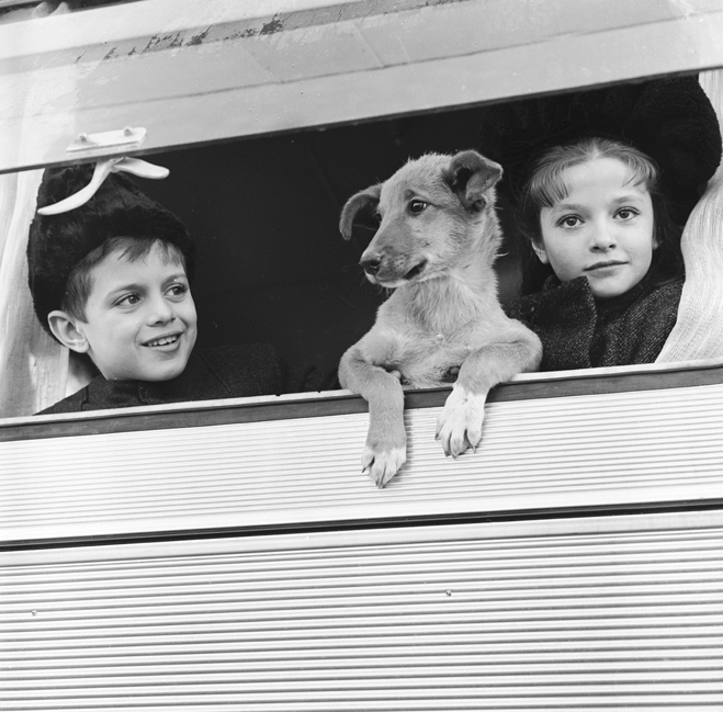 Tarek Sharif as Young Yuri Zhivago, Mercedes Ruiz as Young Tonya, and dog looking out open window.
