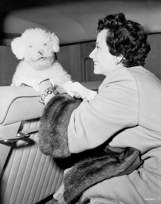 Merle Oberon with curly coated white dog in front seat of car from the film Deep in My Heart