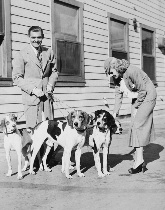 From Wife vs Secretary: Clark Gable as Van, holding dog leases, and Jean Harlow as Whitey, wearing hat, petting dogs.