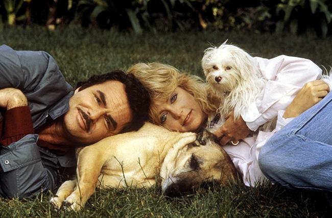 Best Friends - Burt Reynolds and Goldie Hawn