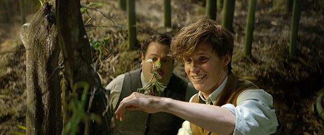 DAN FOGLER as Jacob, EDDIE REDMAYNE as Newt and a beast called a Bowtruckle