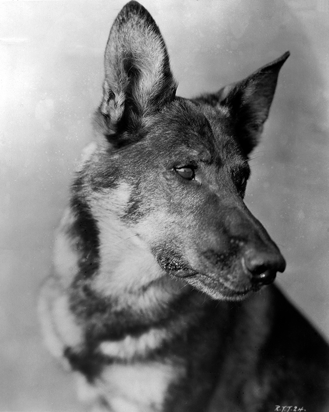 Rin Tin Tin - Rough Waters