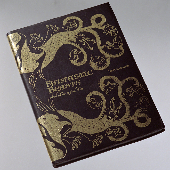 newt scamander's book as seen in Harry Potter and the Sorcerer's Stone