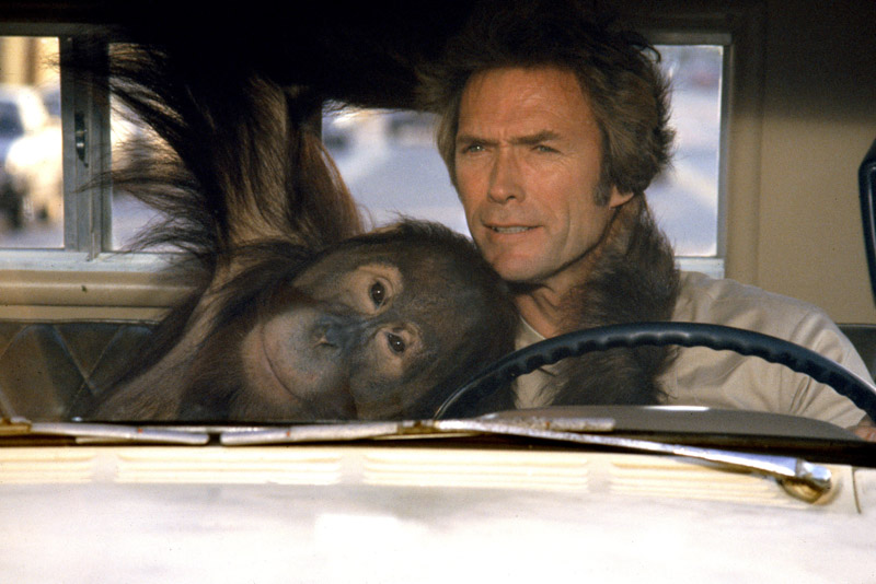 "Clint Eastwood in ""Every Which Way but Loose"""