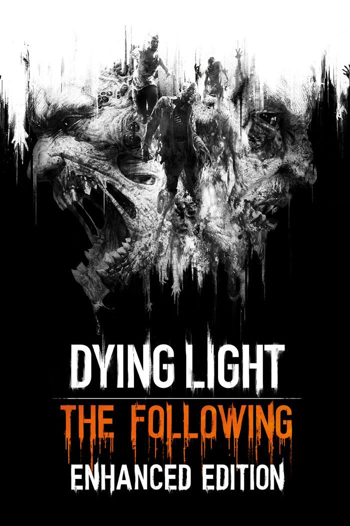Dying Light: The Following keyart