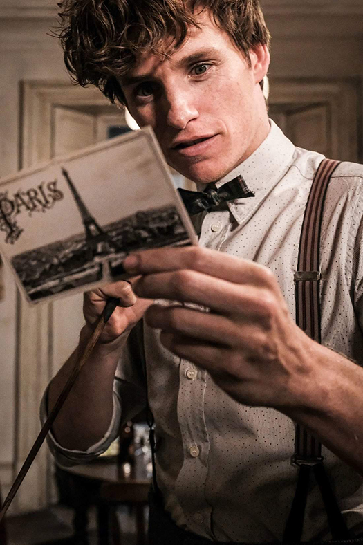 Newt Scamander reading a postcard with the Eiffel Tower on the front