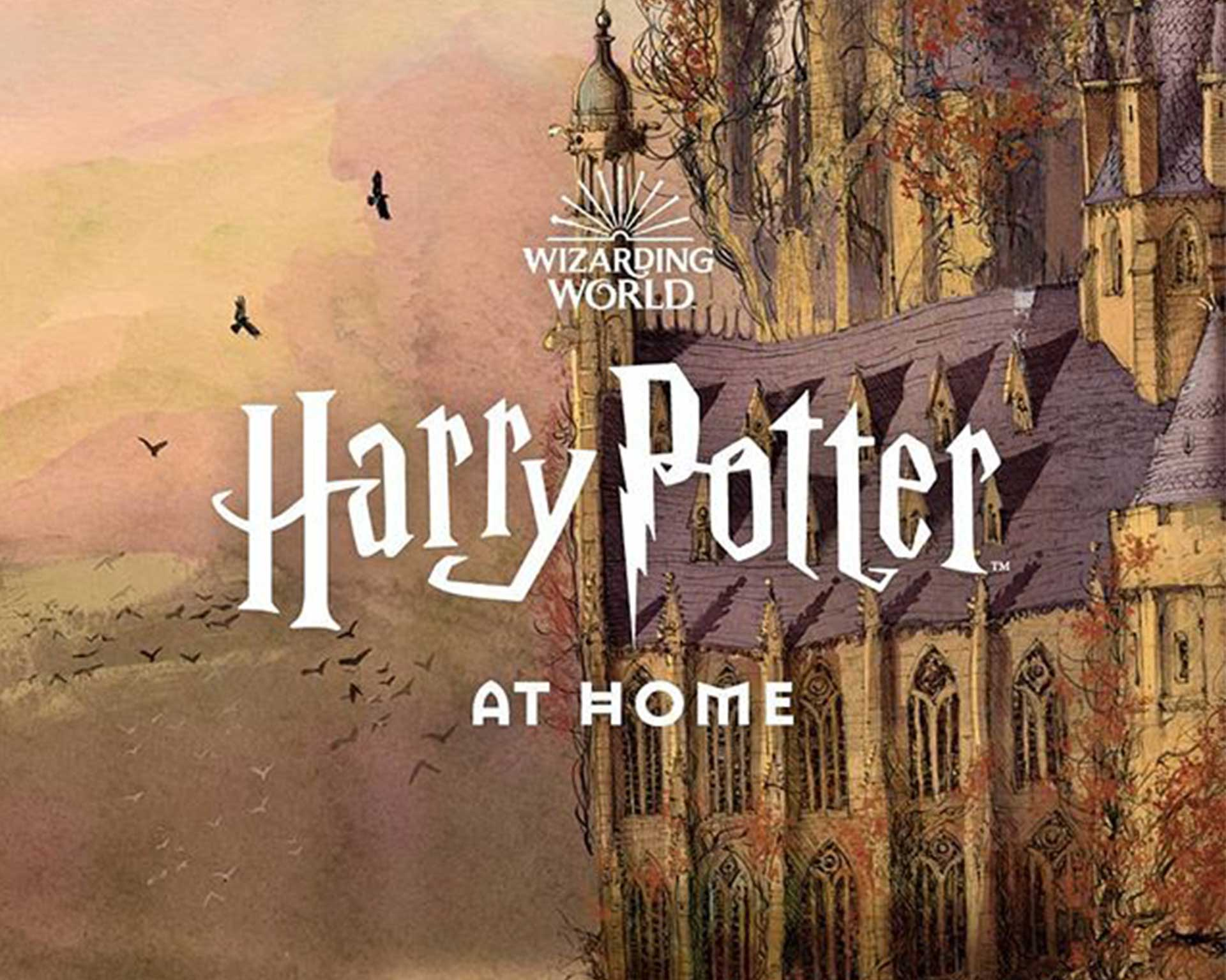 WarnerBros.com   Bring the Magical World of Harry Potter Home ...