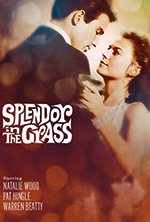 warner archive collection releases splendor in the grass on dvd